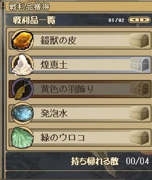 羽飾り.JPG